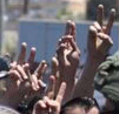 PalestnVsigns.jpg