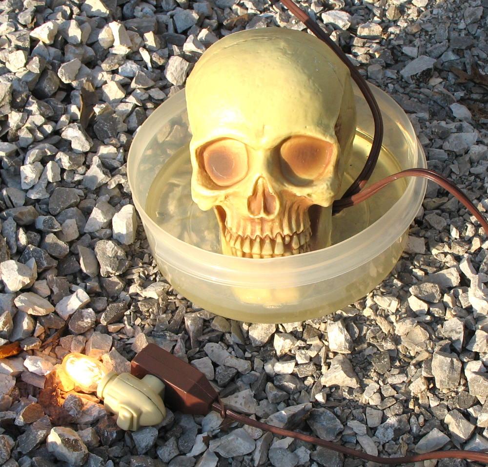 skull_xmtr.jpg