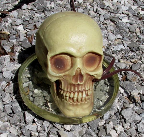 skull_xmtr1.jpg
