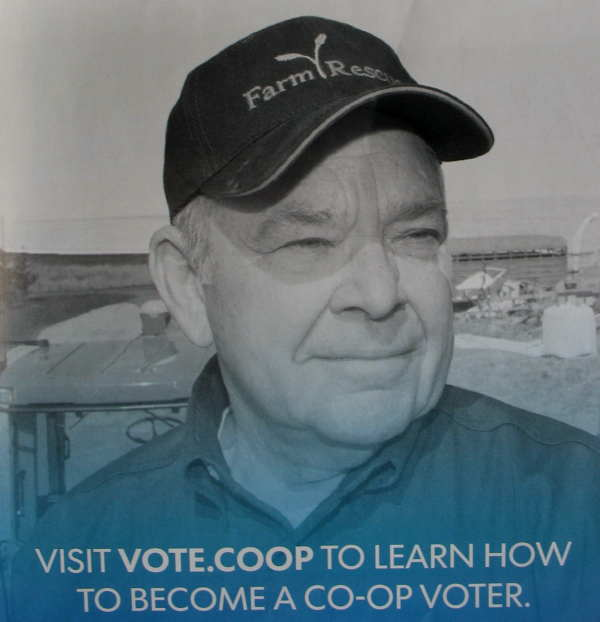voteCoop.jpg